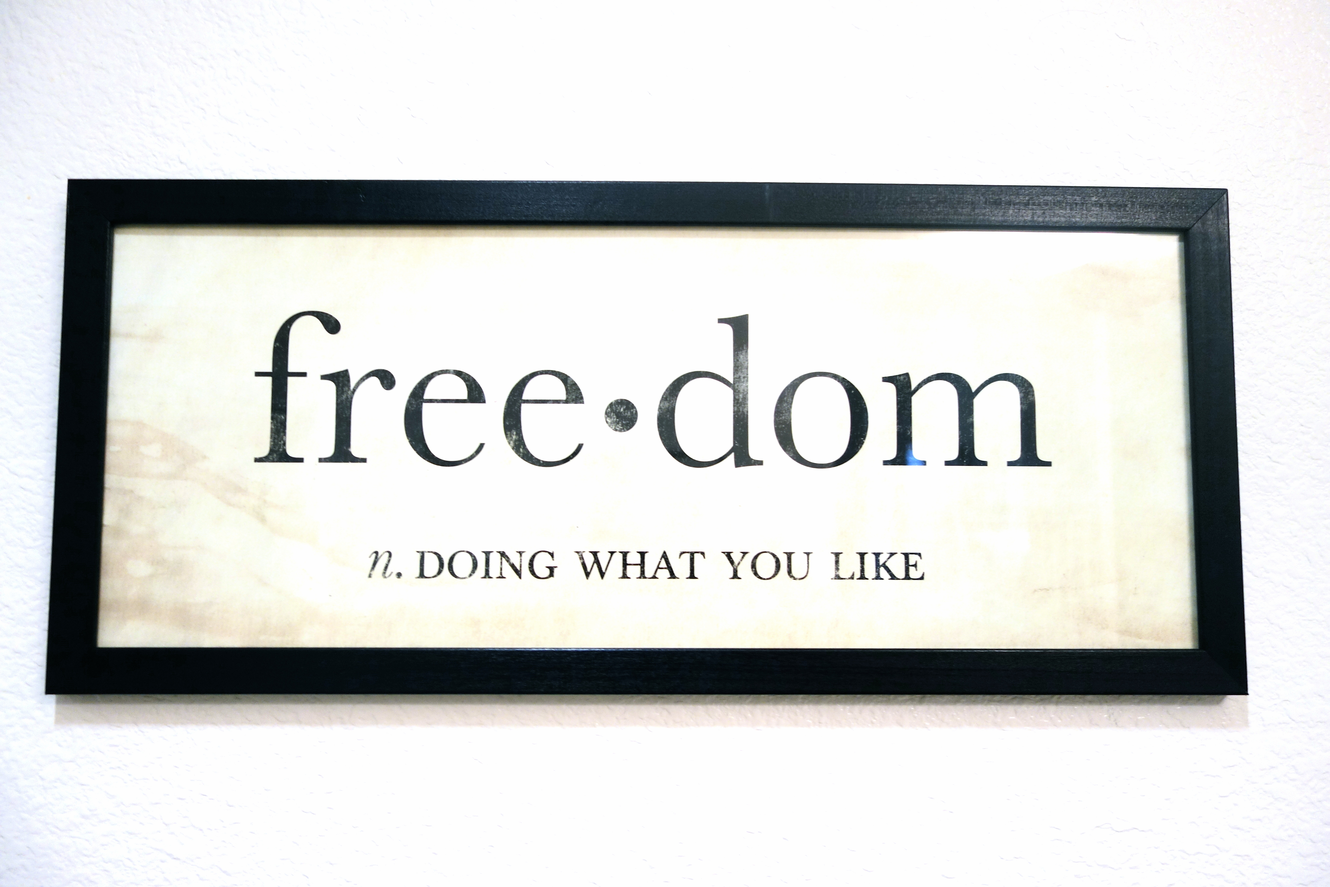 Freedom Definition Pic