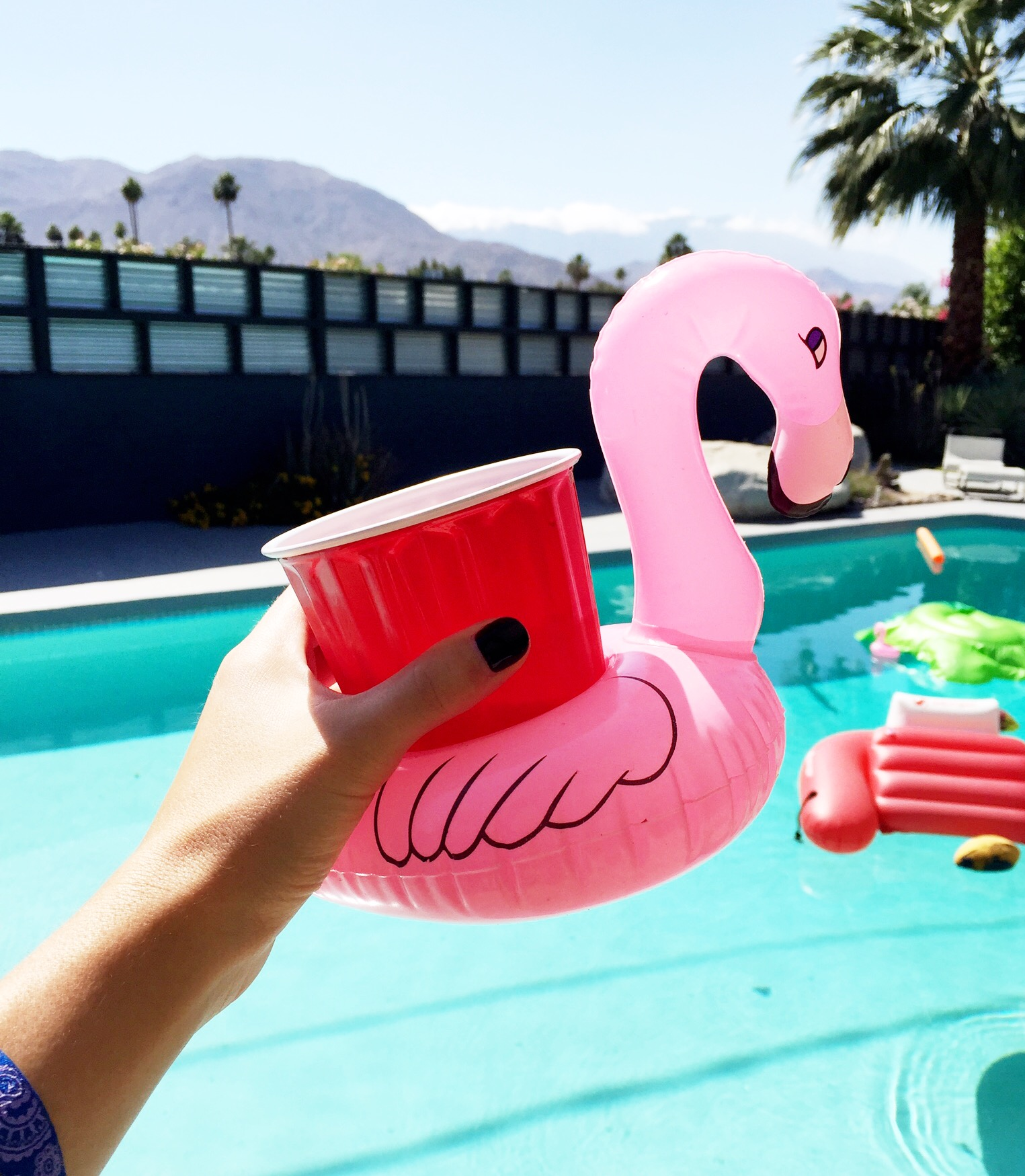 What To Wear When You're Keepin It Country. Party drinks! Flamingo inflatable drink holders!
